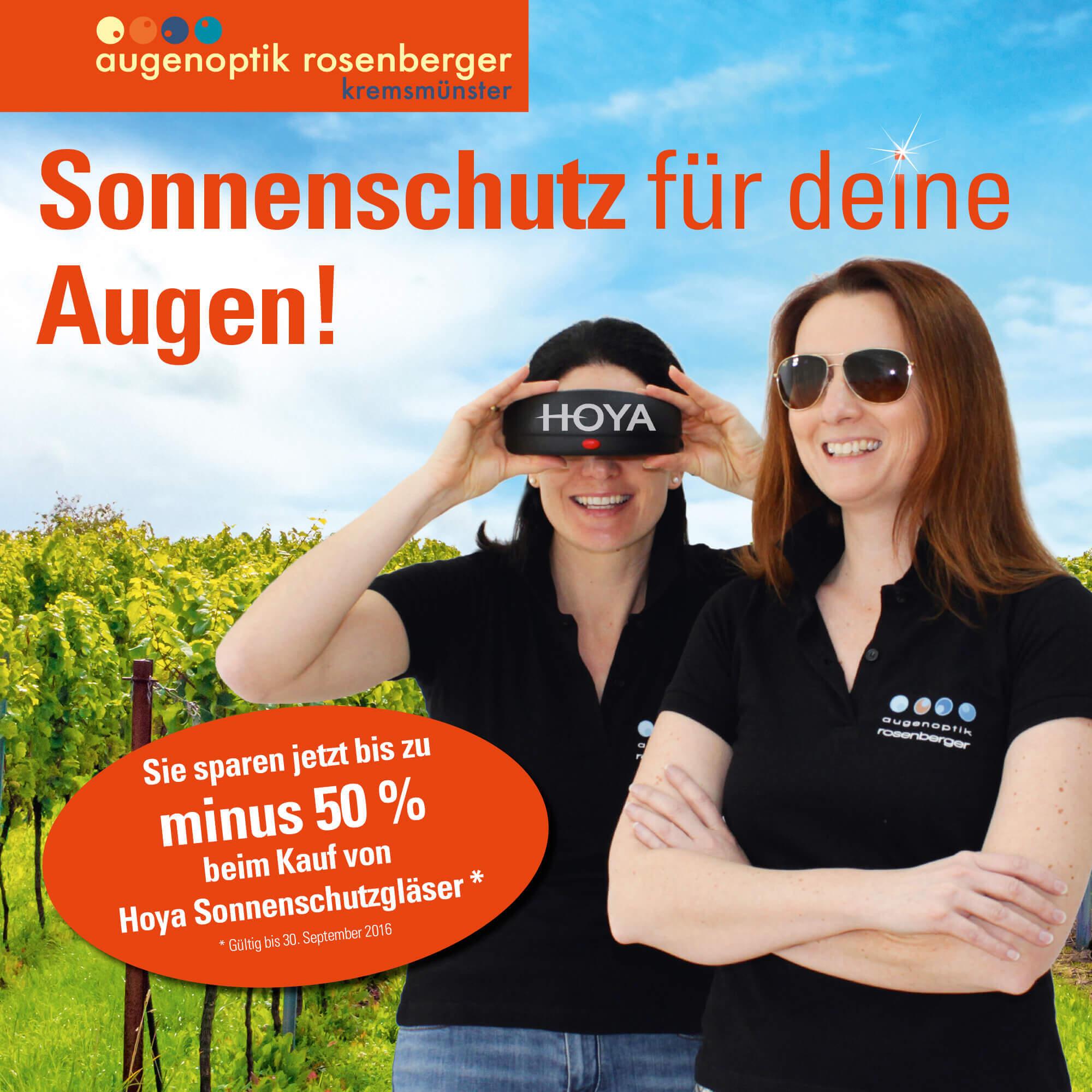 rosenberger_plakat_hoya-weinrebe195x195cm_1zu5